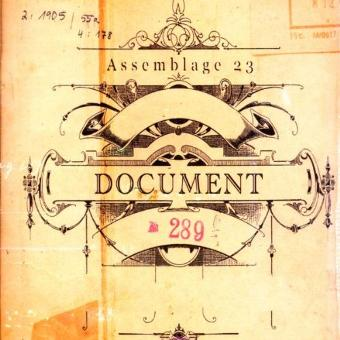 Assemblage 23 – Document