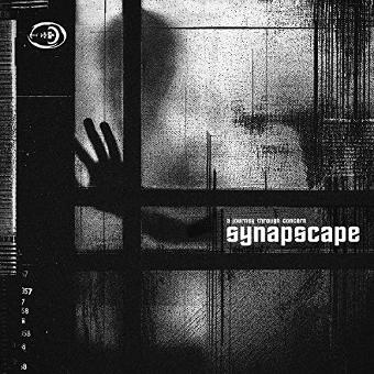 Synapscape – A Journey Through Concern